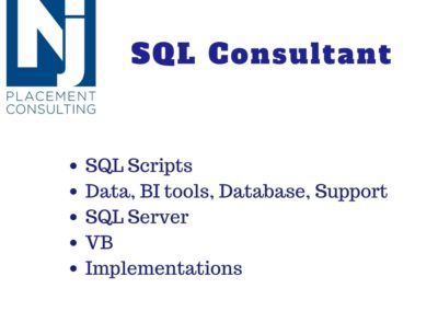 Technical SQL Implementation Support Consultant (SQL Coder)